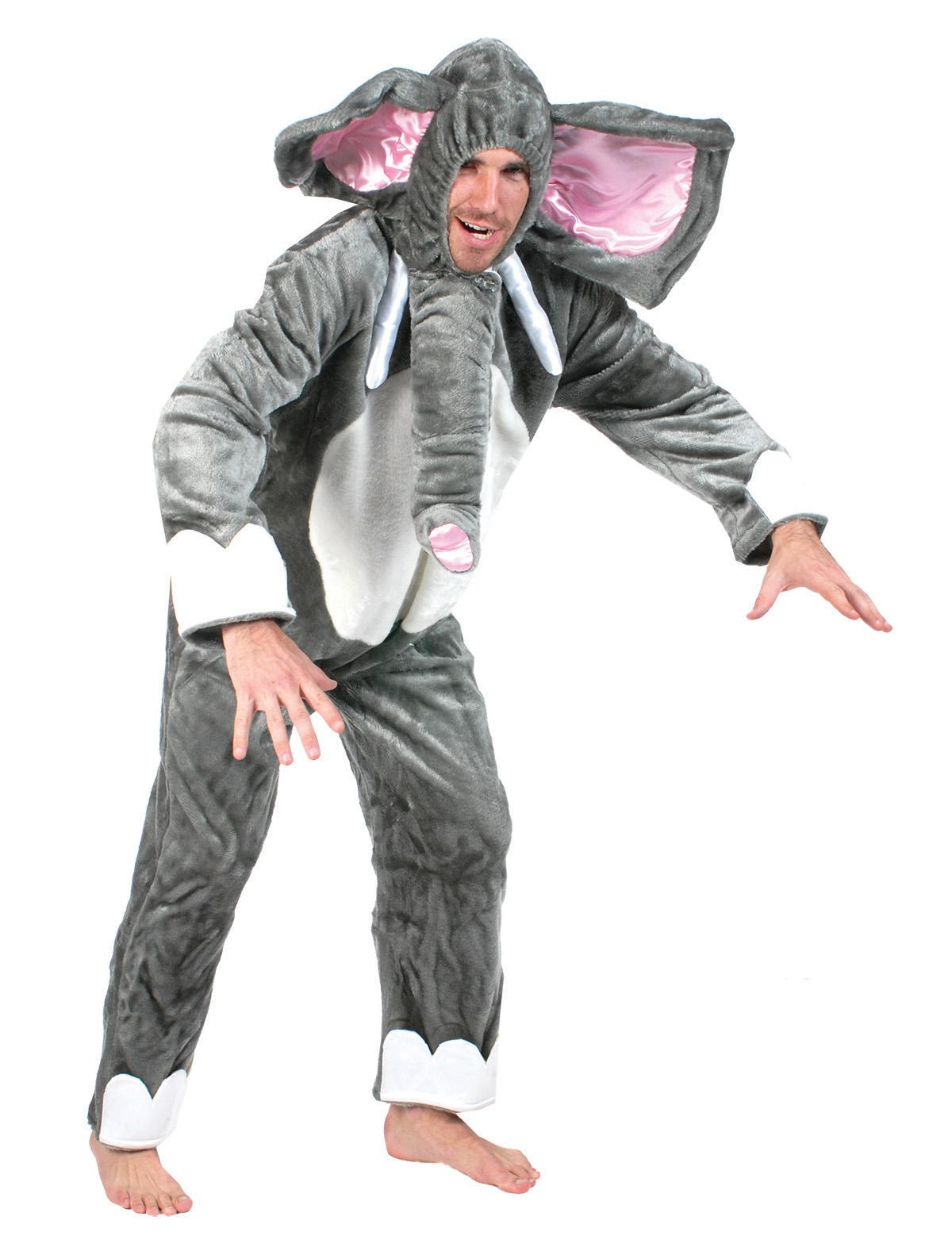Elefant Benjamin
