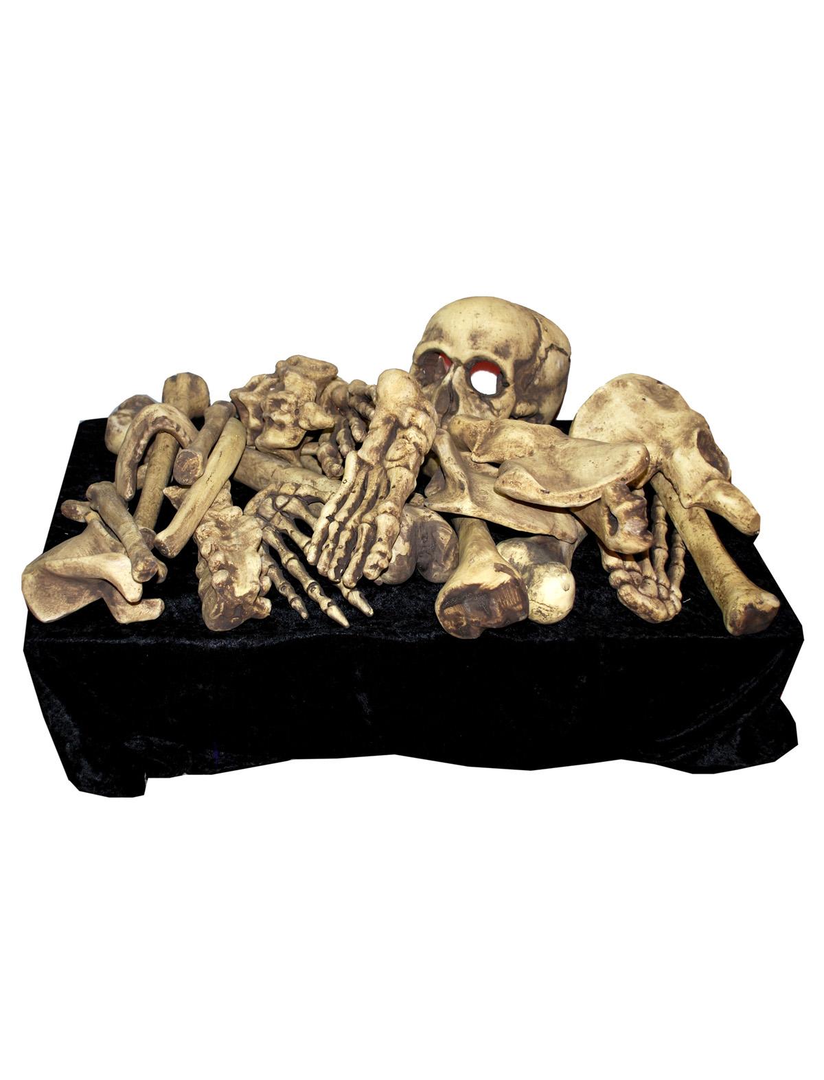 Knochenset mit Licht 28-teilig