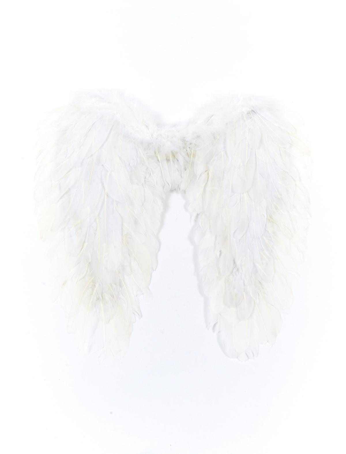 Federflügel weiß versch. Größen 50x50cm