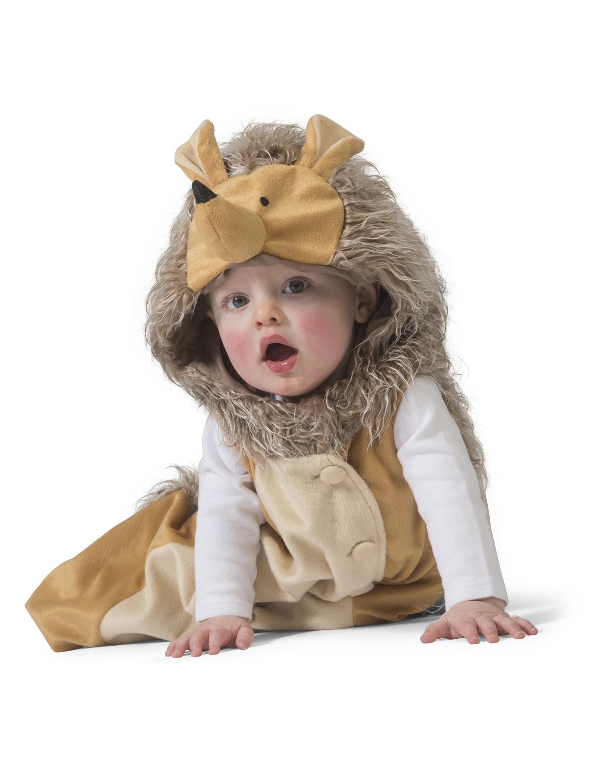 Baby Igel Henry