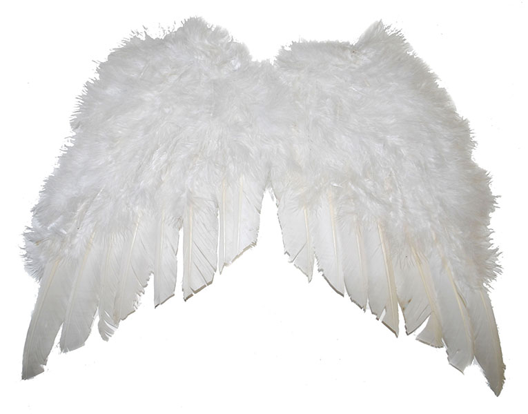 Federflügel weiß ca. 35 cm x 34 cm