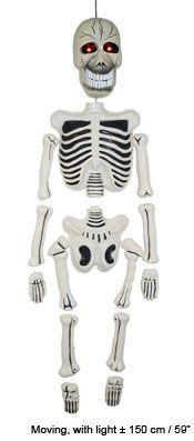 Skelett 150 cm, beweglich mit Licht